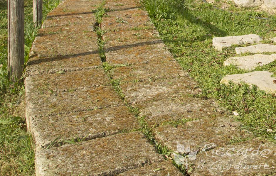 Giardino Mattoni Tufo : Camminamento con tufi u2013 riccardo il giardiniere